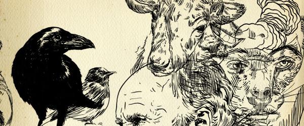 O bestiário ilustrado de Pedro Lourenço
