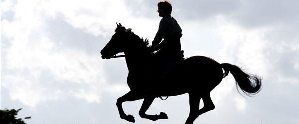 """""""Cavalo de Guerra"""""""