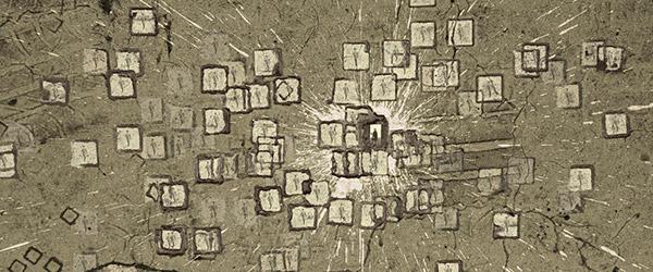 """Exposição """"Grifo"""" na Galeria das Salgadeiras"""