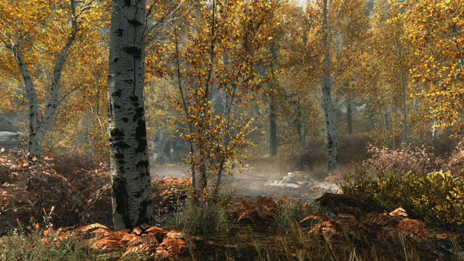 skyrimspecialeditionfallforest_1465779409