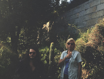 The Sunflowers | Entrevista